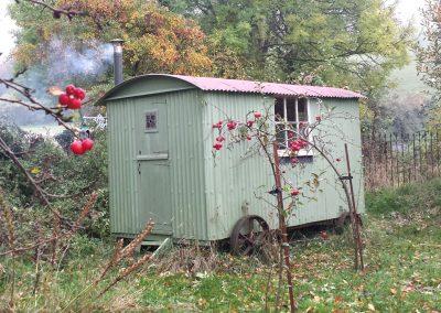 Lou's shepherd hut