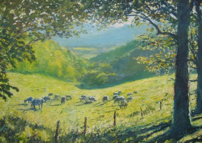 Sheep above Litton Cheney Dorsetjpg