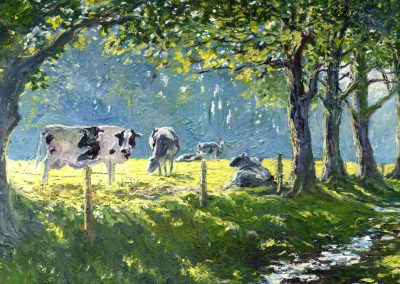 cows river light